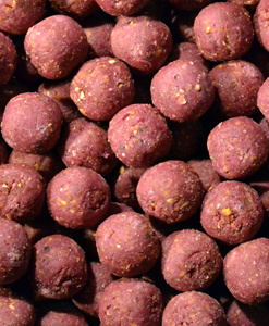 Feed Up Whip Coolberry Mora Boilies 14mm / 20mm / 28mm - 1KG