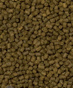 Feed Up FISH Pellet 3mm / 6mm - 1 Kg