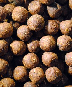 Feed Up Indian Krait Aglio &...Boilies 14mm / 20mm / 28mm - 3Kg (bucket)